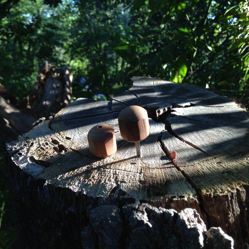 Bird Cage Awl In Stump