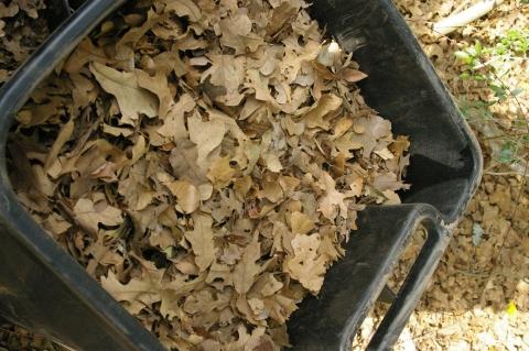 Potting mix toolmaking art for Potting soil versus garden soil