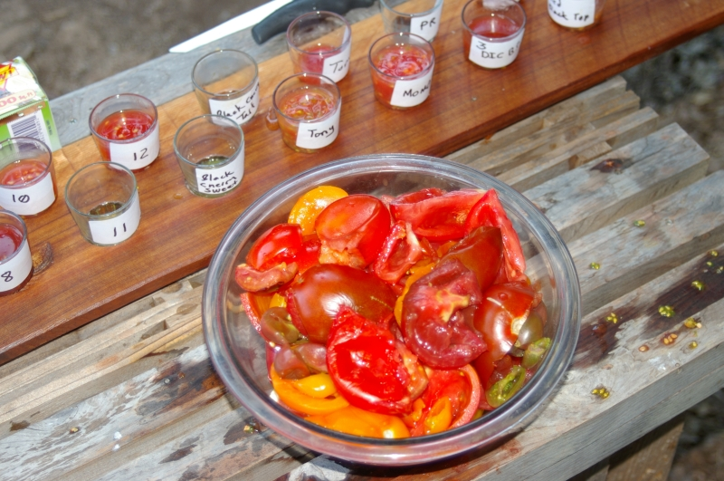 Smushed tomato